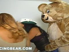 Teddy kriegt den Schwanz gelutscht